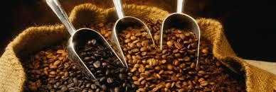Кофе оптом.  С какого бодрящего напитка стоит начинать день